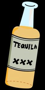 Unterschied von Mezcal und Tequila