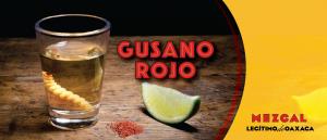 Gusano Rojo Mezcal mit Wurm